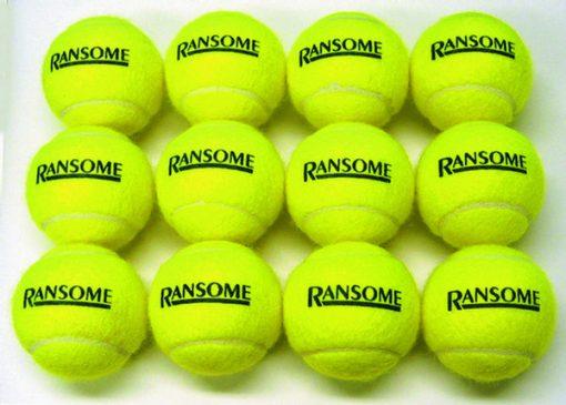 Pack Of 12 Tennis Balls By Hotshot Sport