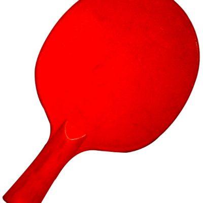 Poly Plastic Table Tennis Bat By Hotshot Sport